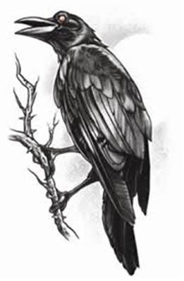 Tatouage gothic the raven TINSLEY